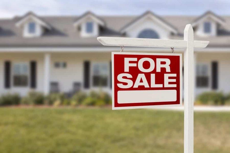 Career profile: Real Estate Agent